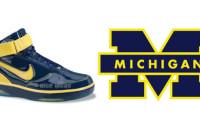Nike Air Force 25 Michigan 316881-472