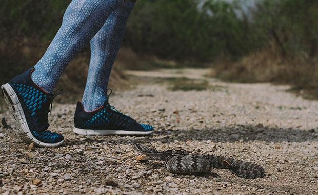 """Nike """"Rattlesnake"""" Custom Socks for Texas Relays"""