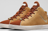 Nike LeBron 12 NSW Lifestyle Lion's Maine Official Images