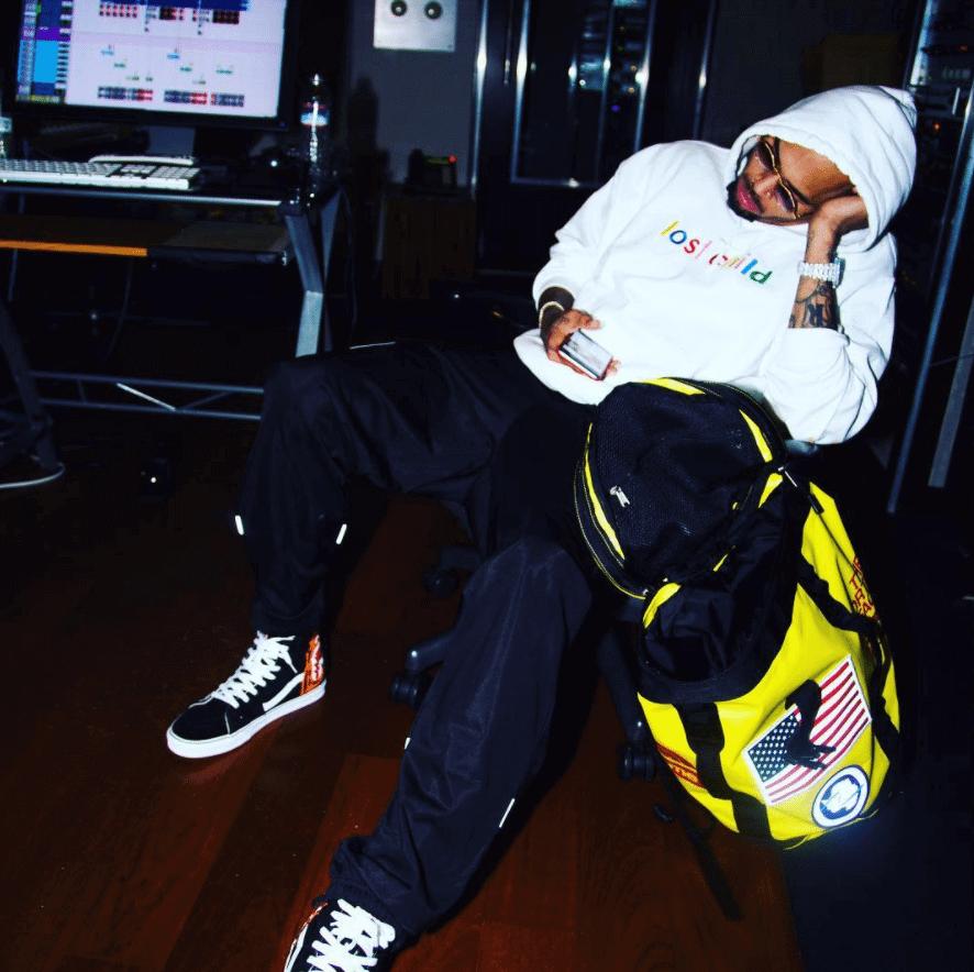 Chris Brown in the Vans SK8 High
