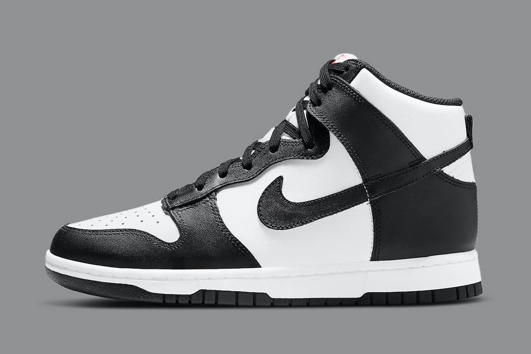Nike Dunk High DD1869-103