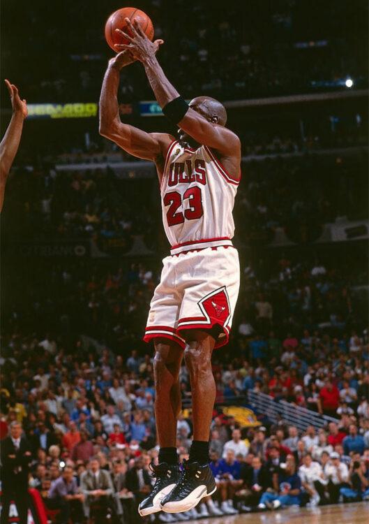 Air Jordan 12 Playoffs 2022